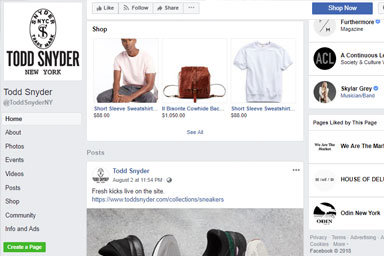 4 Shopify Facebook Store Examples Whole Design Studios